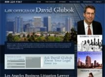 Law Offices of David Glubok